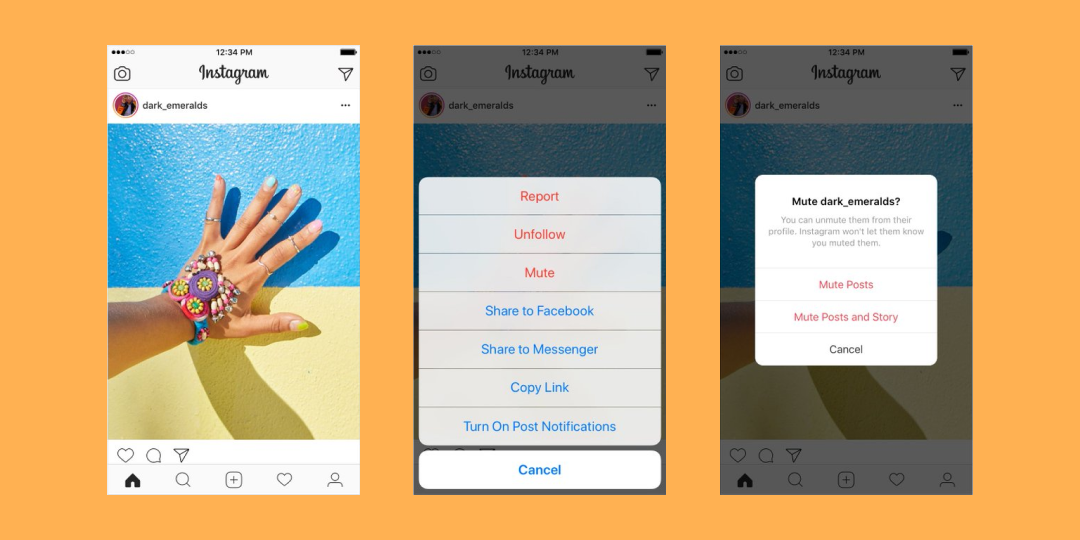 New Instagram Feature: Muting Posts